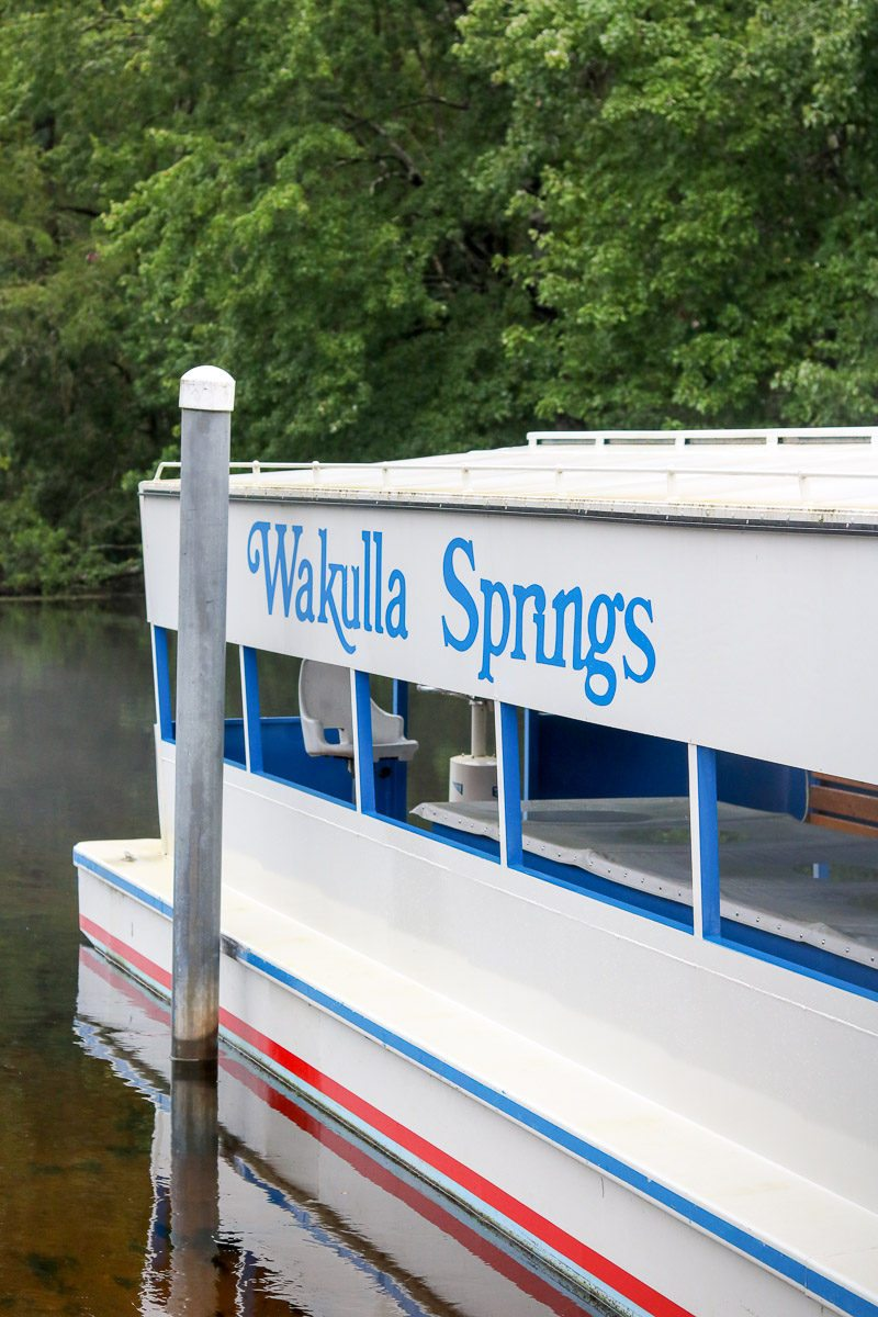Visit Wakulla Springs jungle boat