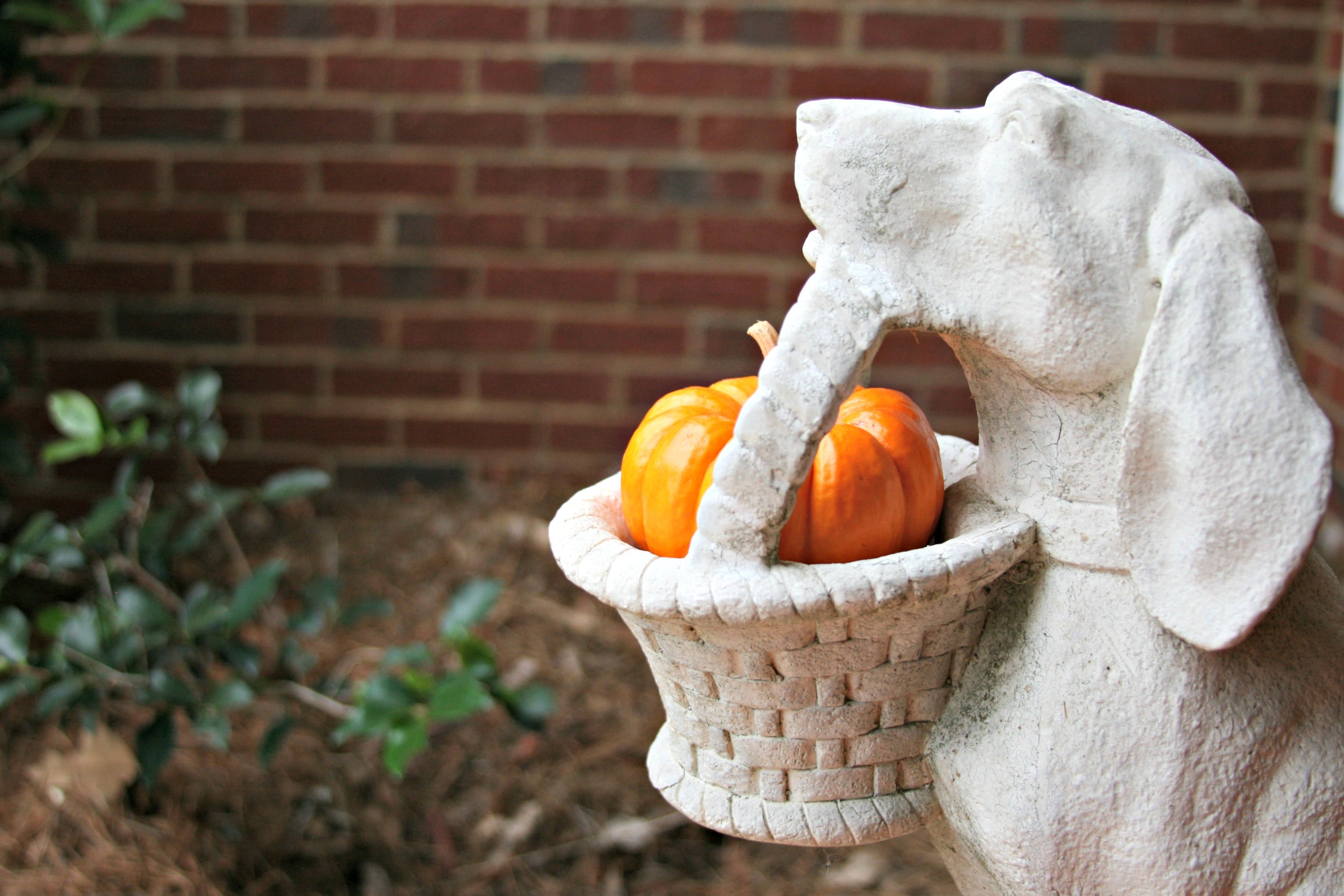 Small Pumpkin porch decoration