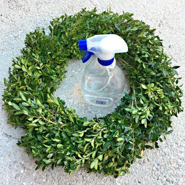 Water bottle to spritz a boxwood wreath for Christmas