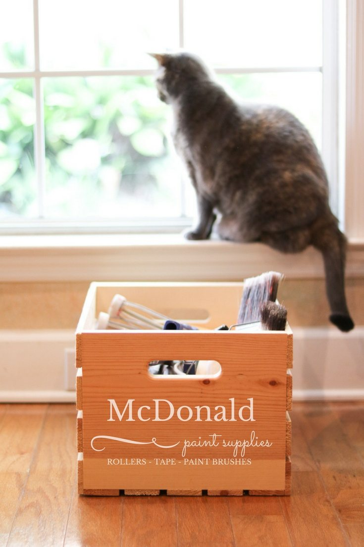 Best painters tools list featuring my wooden crate with a kitty sitting in a window