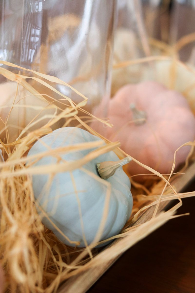 Farmhouse pumpkin centerpiece mini