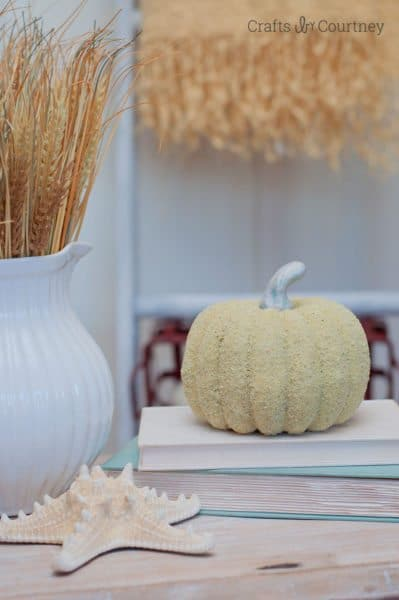 Pumpkin decor coastal sand