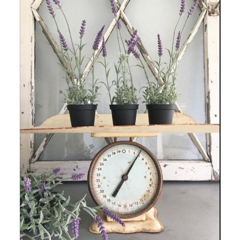 decorating with vintage scales and photo by desert decor