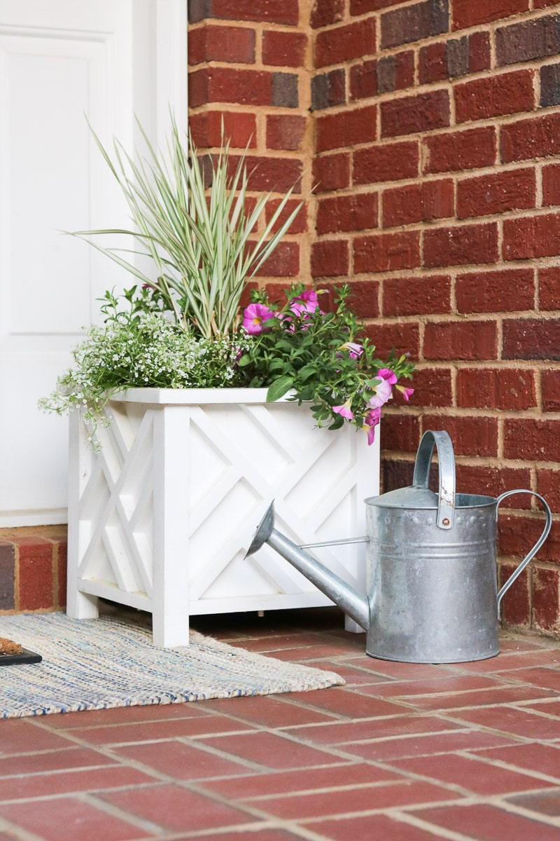 container flower gardening using a planter holder