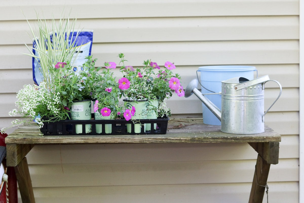 container flower gardening at the potting bench