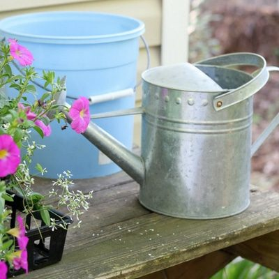 SENSATIONAL CONTAINER FLOWER GARDENING LIKE A PRO 1