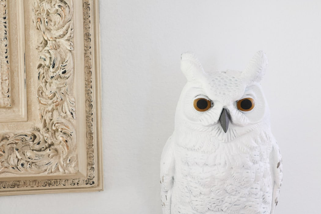 Halloween Decorations for a Harry Potter Celebration. Hedwig the mail carrier owl