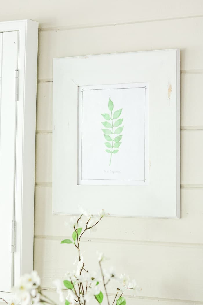 botanical free downloadable art prints DIY frame project displaying printable on back porch