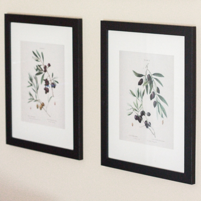 Free Printable Botanical Prints by Gather & Flourish with Olive Branch Botanicals