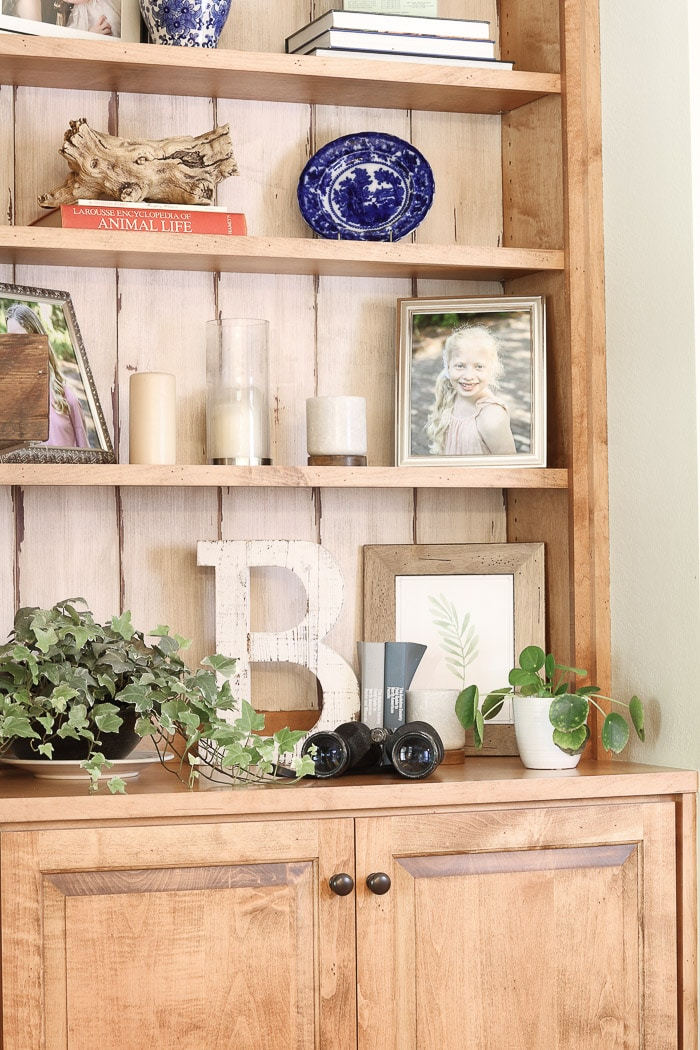 How to decorate a bookcase using real plants