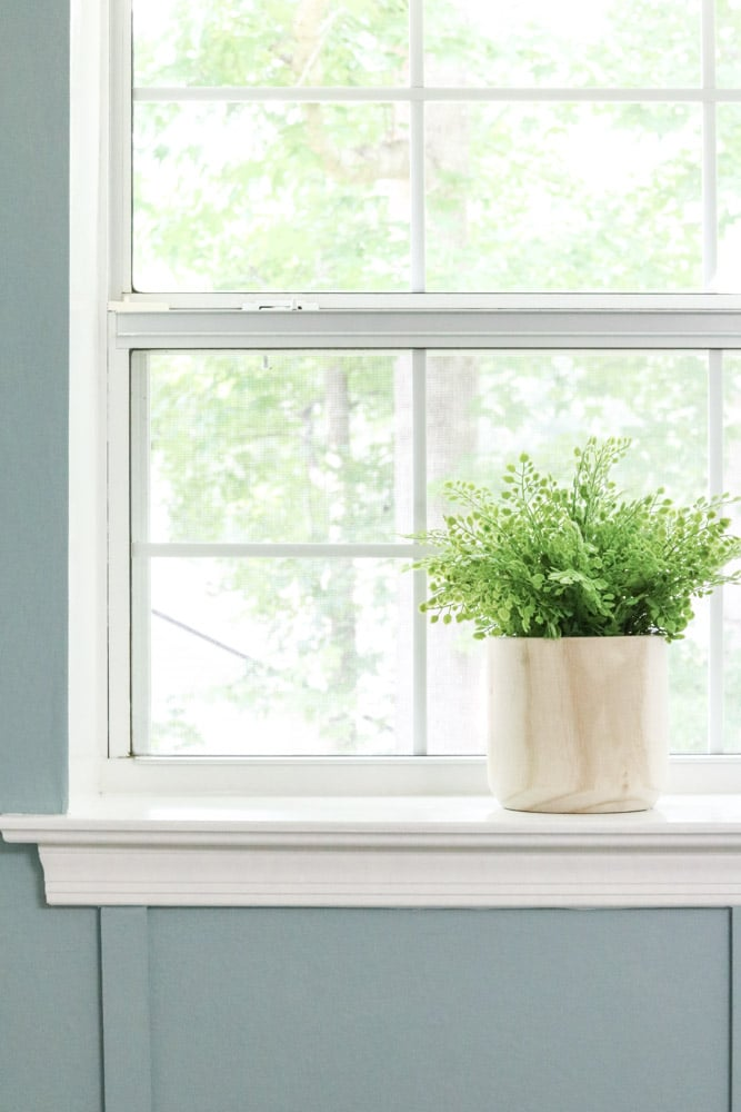 Maiden hair fern plant in a wood pot sitting in a window seal