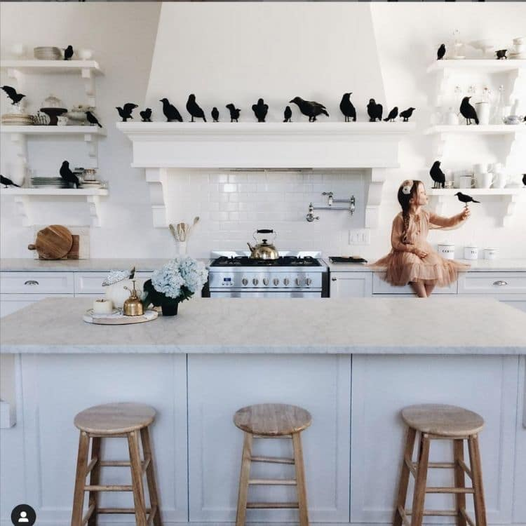 Fun Halloween decoration idea for the kitchen with lots of black grows sitting on the shelves and over the range like in the movie The Birds.