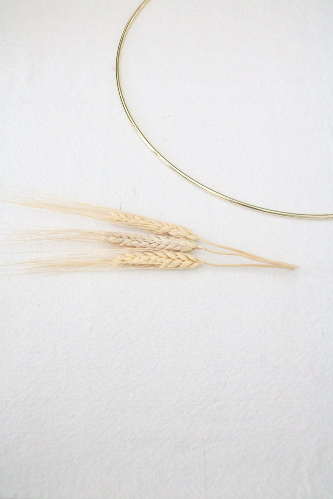 Measure and cut dried wheat to fit onto a metal ring