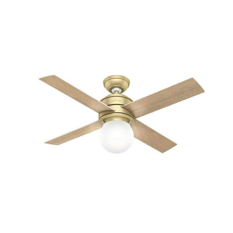 Inexpensive Hunter modern ceiling fan with gold body and light wood blades