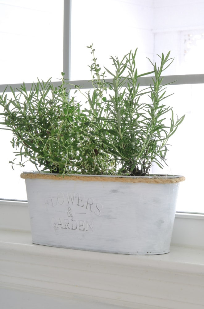 how to build a indoor herb garden Dollar Tree project