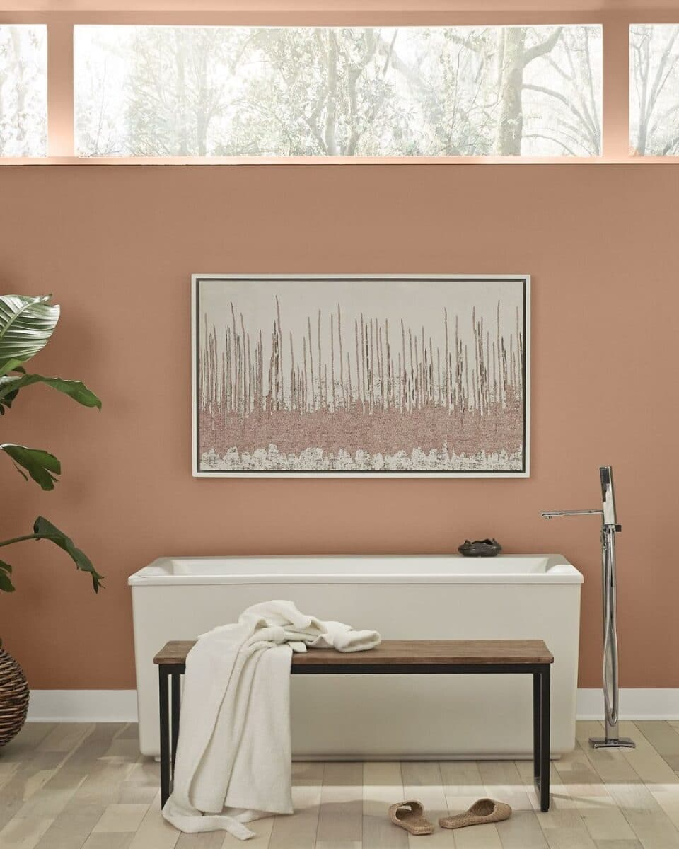 Behr paint color of the year 2021 Canyon Dusk