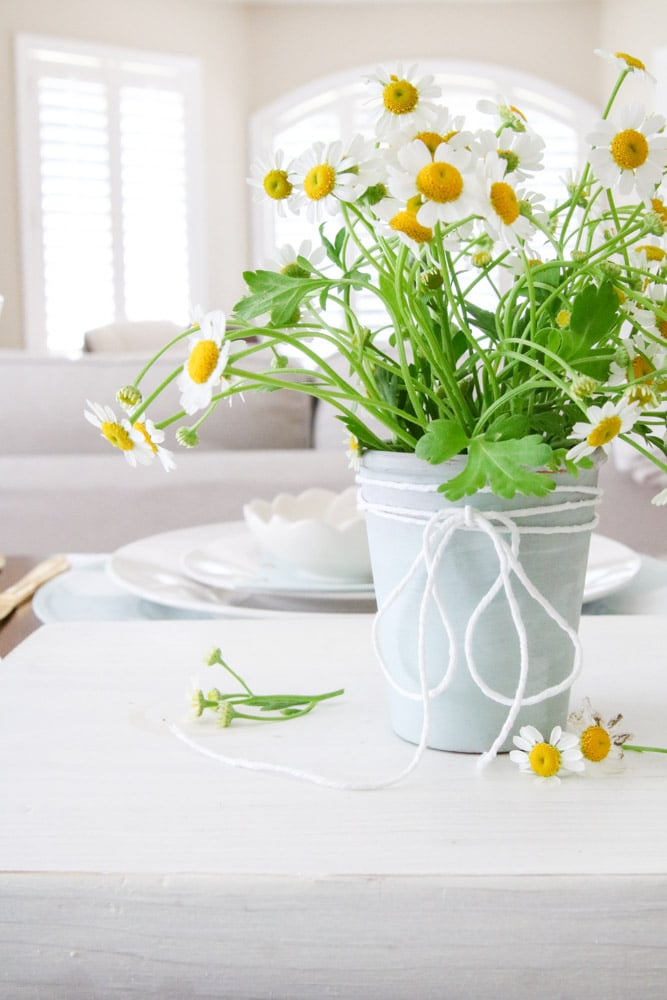 DIY Dollar Store Spring Bee Themed Table Landscape with Chamomile Flowers, Dollar Tree Gingham Buffalo Check Chargers, White Dinnerware, La Rochere Beehive Jars, Martha Stewart Honey and Bee Napkins.
