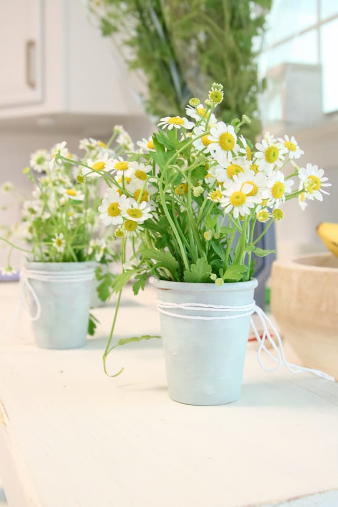 Easy DIY spring centerpiece with vintage clay pots and chamomile flowers