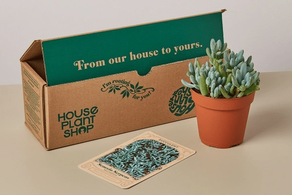 Plant Subscription Box Mother's Day Gift Guide