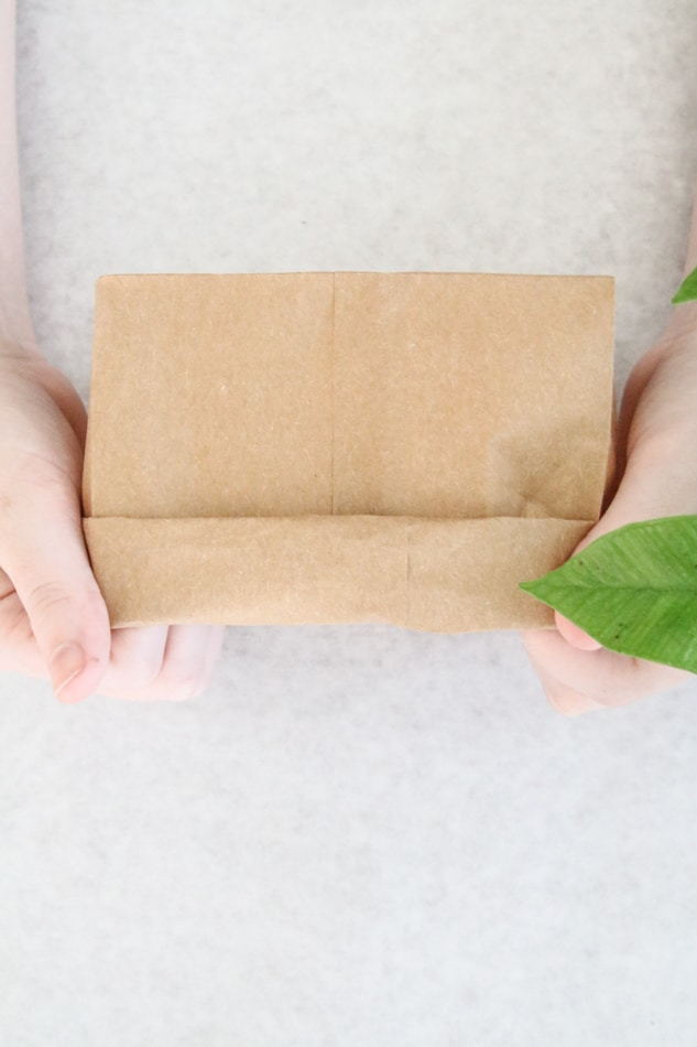 Folding the top of a brown paper lunch bag to make a plant planter